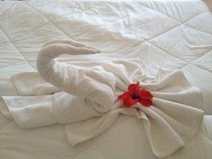 Hotelul în care te poți caza complet gratuit. Ce condiții trebuie să îndeplinești