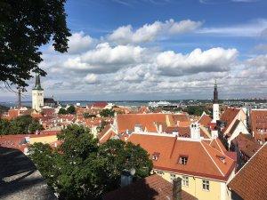 Doi diplomați ruși au fost expluzați din Estonia. Ce urmează să facă Rusia