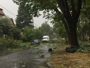 Avertizare meteo: Cod galben de vânt pentru trei județe din România