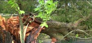 Tornadele și inundațiile au devastat SUA. Zeci de persoane au fost evacuate-VIDEO