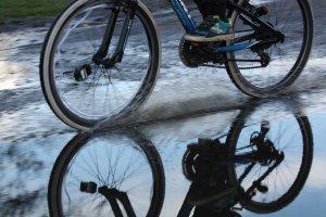 Un biciclist, victima vremii. A murit după ce s-a dezechilibrat din cauza vântului şi a fost lovit de o maşină