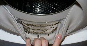 A amestecat două ingrediente și a scăpat pentru totdeauna de mucegaiul și mirosul neplăcut din mașina de spălat