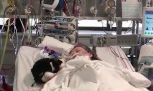 Aflată pe patul de spital, adolescenta s-a trezit din comă și i-a șoptit ceva de-a dreptul șocant mamei. Femeia a izbucnit imediat în lacrimi
