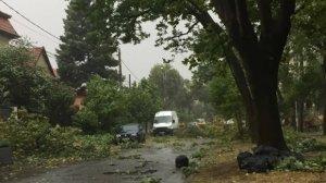 Meteorologii avertizează! Cod galben de vânt puternic în toată țara, până luni noapte