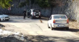 """Simona din Bacău cobora spre Sinaia, de la Cota 1.400, când a văzut o creatură neobișnuită pe șosea. A tras repede mașina pe dreapta. """"O Doamne, nu! Venea după mine! Fugi de aici"""" (FOTO)"""