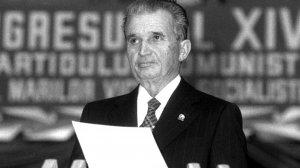 Începutul anilor '80 a venit cu sacrificii mari din partea românilor. După calculele comuniştilor, pentru o persoană era de ajuns o jumătate de...