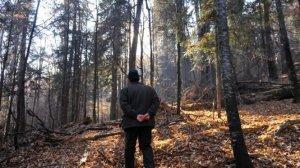 Documentar exploziv la Antena 3. Pădurari uciși de mafia lemnului