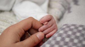 """Ministrul Sănătăţii: """"Procedura de achiziţie a incubatoarelor cu care vor fi dotate 140 de maternităţi s-a încheiat"""""""