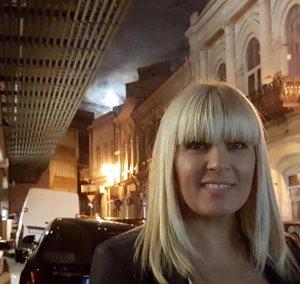 Instanța supremă admite o cerere a Elenei Udrea și sesisează Curtea Constituțională