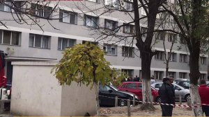 STS, după deratizarea din Timișoara soldată cu victime: Au fost 15 apeluri la 112! Erau semnalate vărsături, colici și dureri