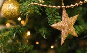 Semnificația bradului de Crăciun. Sigur nu știai asta!