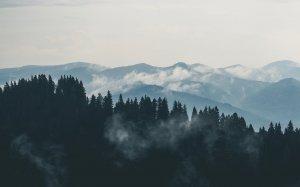 Panică în Munţii Făgăraşului! Doi turiști au fost surprinși de avalanșă